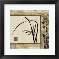 Floral Essence IV Framed Print