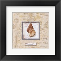 Framed Sea Treasure I - mini
