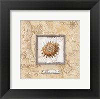 Framed Sea Treasure III - mini