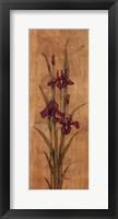 Iris of Delos I - mini Framed Print