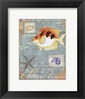 Maritime - mini Framed Print