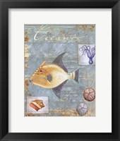 Oceanic Framed Print
