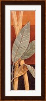 Framed Bali Leaves I