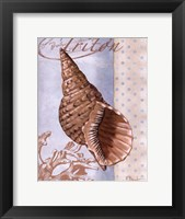 Beachhouse Blue II Framed Print