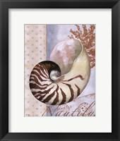Beachhouse Blue III Framed Print