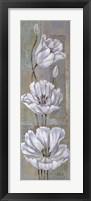 Framed Florentine Tulips