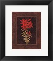 Damask Lily - petite Framed Print