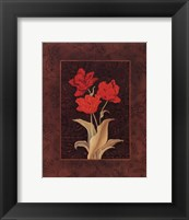 Framed Damask Tulip - petite