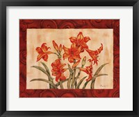 Framed Linen Scroll Amaryllis