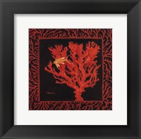 Framed Sea Fan I