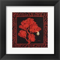 Framed Sea Fan II