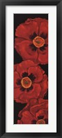Framed Bella Grande Poppies