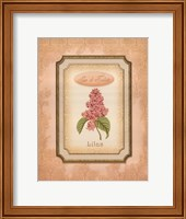 Framed Eau de Parfum II
