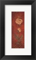 Chrysanthemum - petite Framed Print
