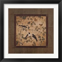 Outdoor Aviary I - CS Framed Print