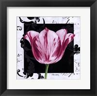 Damask Tulip I Framed Print