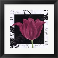 Framed Damask Tulip IV