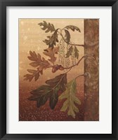 Framed Oak Leaves
