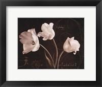 Framed Garden Love Letter II