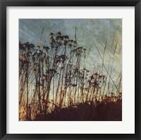 Wild Grass I Framed Print