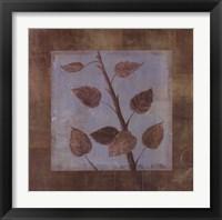 Framed Birch - CS