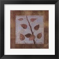Framed Birch - mini - CS