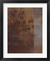 Framed Woodland Shadows II - CS