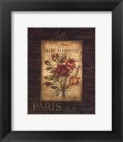 Framed Bel Bouquet III - mini