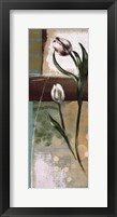Framed Floral Splendor III