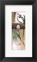Framed Floral Splendor III - petite