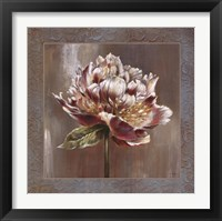 Framed Pivoines I - CS