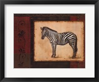 Framed Savanna Zebra