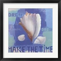 Framed Shells of Time I