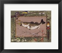 Large Mouth Bass Framed Print