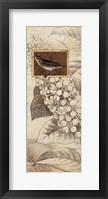 Spring Bird II Framed Print