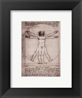 Framed Vitruvian Man, 1492