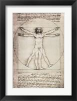 Framed Vitruvian Man, 1492