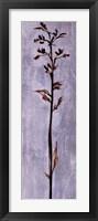 Cool Botanicals III Framed Print