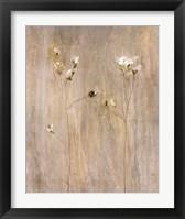 Vanilla Bloom II Framed Print