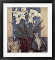 Framed Amaryllis & Cat