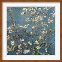 Framed Blossoming Almond Tree, Saint-Remy, c.1890 Detail
