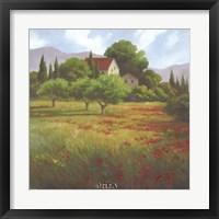 Framed Olives & Poppies