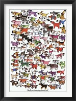 Framed One Hundred Dogs and a Cat