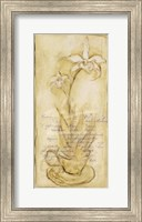 Framed Afternoon Orchids II