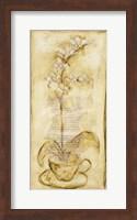 Framed Afternoon Orchids IV