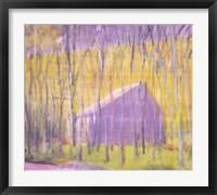 Framed Saltbox Barn, 2002