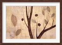 Framed Lyrical Branches II