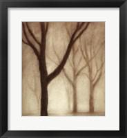 Framed Forest I