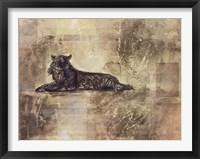 Framed Tiger Profile