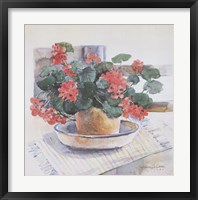 Framed Geraniums, 1986